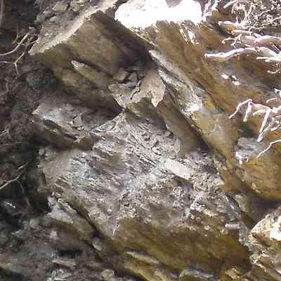 gneiss disposé en feuilles