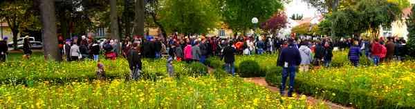 Les classes en 5 d filent en ville patrimoine et for Jardin couvert lyon
