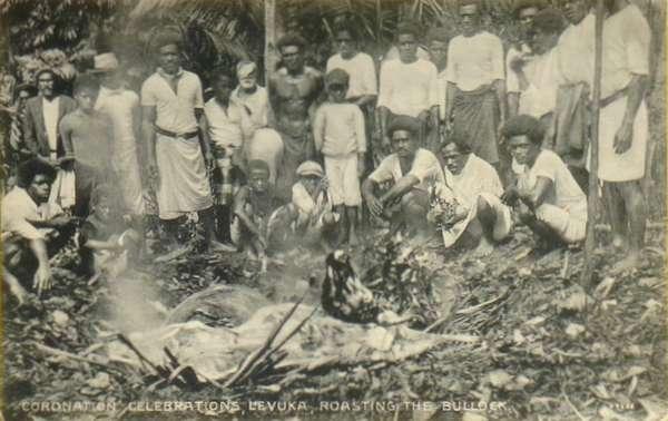 Cuisson d'un taureau à Levuka Fidji