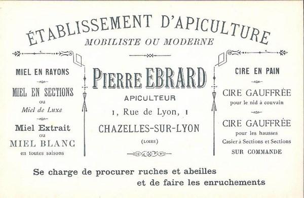 Carte Visite Pierre Ebrard Apiculteur Copier