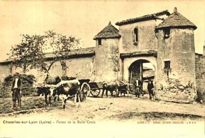 ferme Belle Croix_22